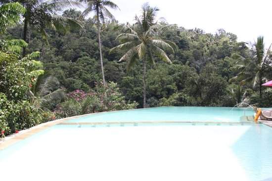 Piscine d bordement picture of ayung resort ubud for Piscine a debordement