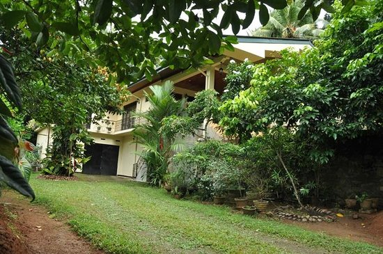 Green View Home Stay