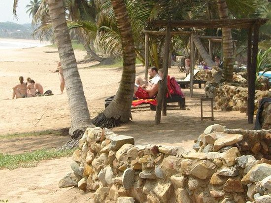 Photo of Safari Beach Lodge Busua