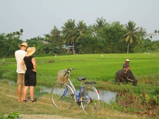 Hoi An Love Of Life Bicycle Tours