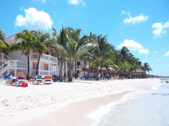 Beach Lots Of Palms For Shade Picture Of Sunscape Sabor Cozumel Cozumel Tripadvisor