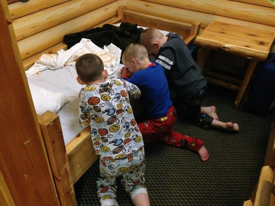 Great Wolf Lodge Bed Bugs