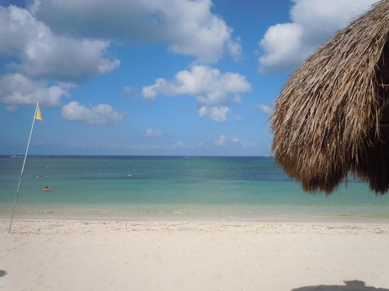 Occidental Grand Cozumel: beach view