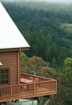 Bunya Mountains Accommodation