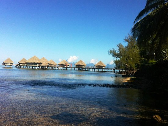 Photo of Armelle - Pension Tahiti