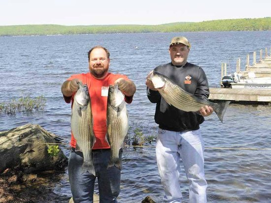 Gorgeous summer days here at lake wallenpaupack picture for Lake wallenpaupack fishing