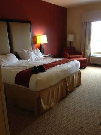 Holiday Inn Express Hotel & Suites Nashville - Opryland: bed and chair to sit in