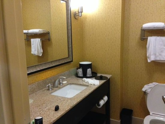 Holiday Inn Express Hotel & Suites Nashville - Opryland: bathroom