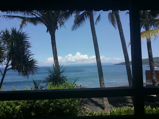Turtle Bay Hideaway: From the porch