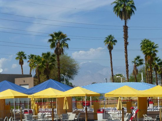 Palm springs restaurant discount coupons