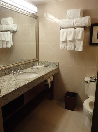 DoubleTree by Hilton & Miami Airport Convention Center: baño amplio