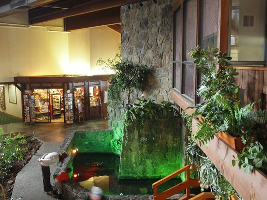 Fireside Inn & Suites: Waterfall pond grotto