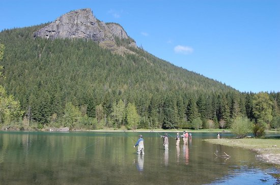 Fly fishing lessons at rattlesnake lake picture of for Evergreen lake fishing report