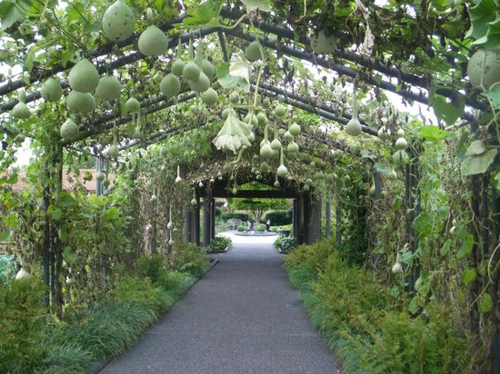 Covered Walkway Picture Of Missouri Botanical Garden Saint Louis Tripadvisor