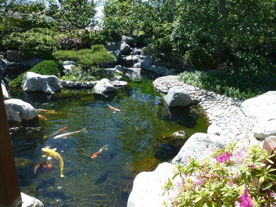 Spanish village art gallery picture of balboa park san for Japanese garden with koi pond