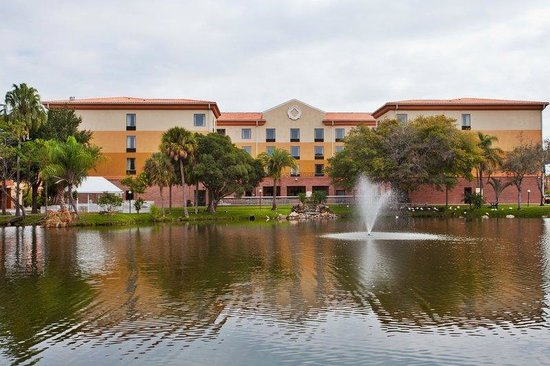 Holiday Inn Express Hotel & Suites - Tampa Stadium Airport
