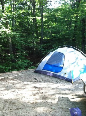 Tent Set Up Picture Of Lafayette Campground Franconia