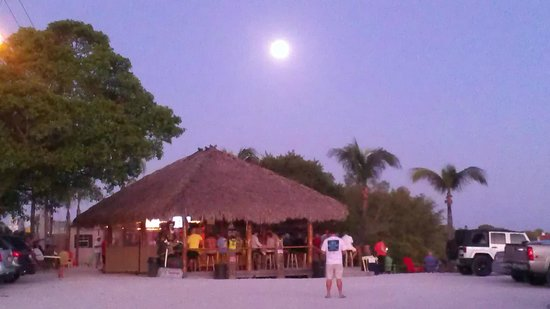Picture of the bar foto van casey key fish house osprey for Casey key fish house