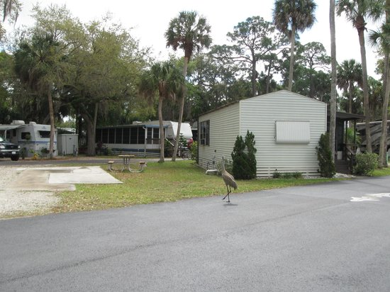 Space Coast RV Resort