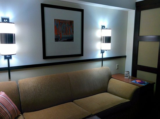 Hyatt Place Herndon / Dulles Airport - East: Couch