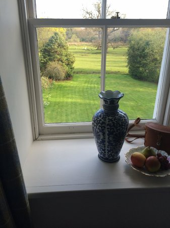 Powis House: View from the room and fresh fruit