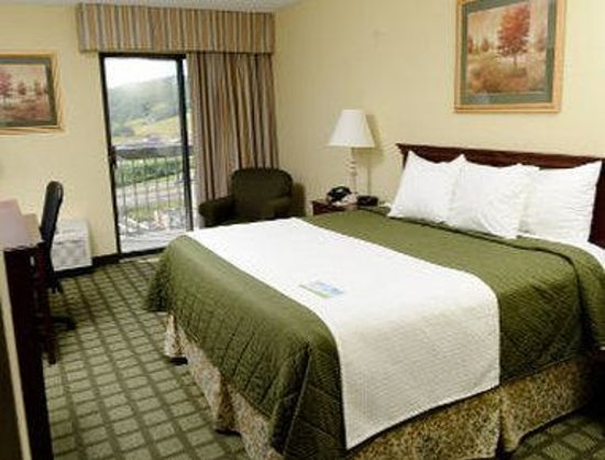 Days Hotel Sutton Flatwoods: 1 Bed Guest Room