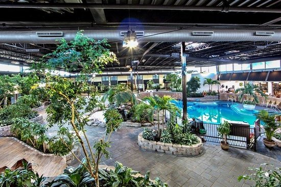 Relax In Our Atrium By The Indoor Pool Picture Of Holiday Inn Montreal Airport Montreal