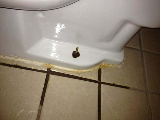 Emerald Inn Expo: Wet tiles and grout from the leaking outdated water wasting toilet. Room 120