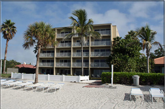 Photo of Turtle Crawl Inn Resort Longboat Key