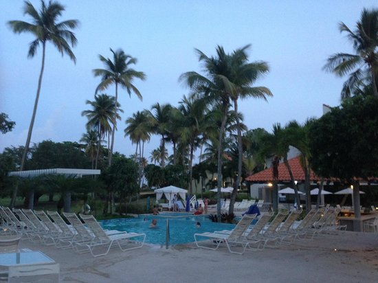 More Views From The Pool And Grounds