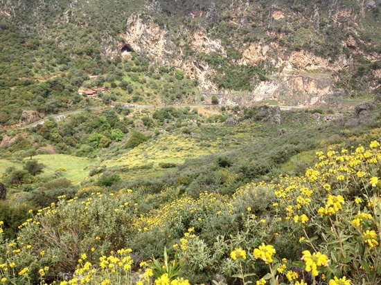 Topolia gorge - Picture of Topolia Gorge, Chania Town ...