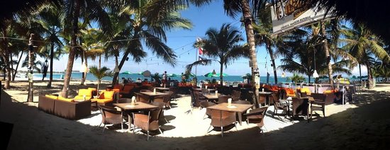 Lazy Dog Beach Bar and Grill Cabarete