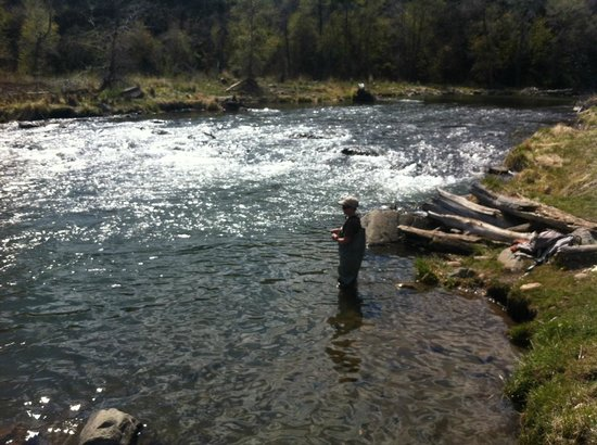 Catching loads of brown trout w utah pro fly fishing for Trout fishing utah