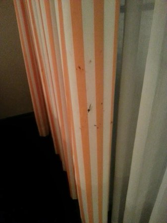 The Annex at The Chelsea: Three different stains on the curtains that housekeeping told us was ok
