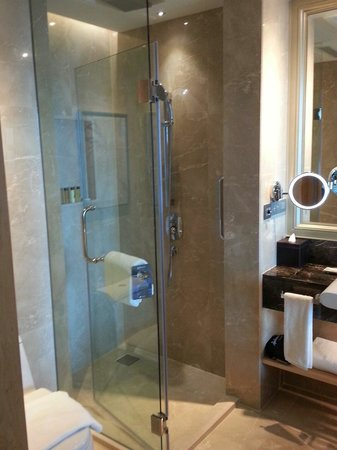 shower and separate bath is handy picture of radisson blu plaza bangkok bangkok tripadvisor. Black Bedroom Furniture Sets. Home Design Ideas