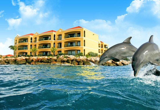 Photo of The Royal Sea Aquarium Resort Curaçao