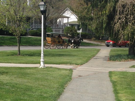 The Greenbrier: Carriage Ride