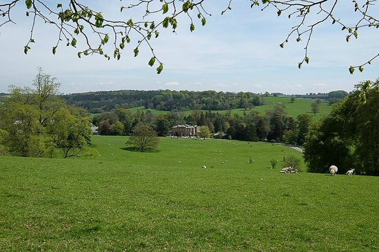 Chard United Kingdom  city pictures gallery : Chard Pictures Traveller Photos of Chard, Somerset TripAdvisor