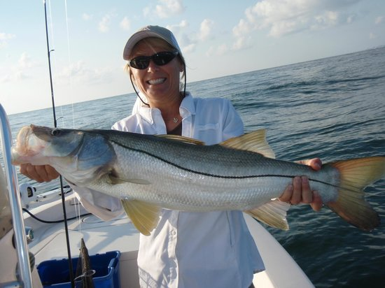Capt fred daytona beach fishing charters for Fishing charters daytona beach florida