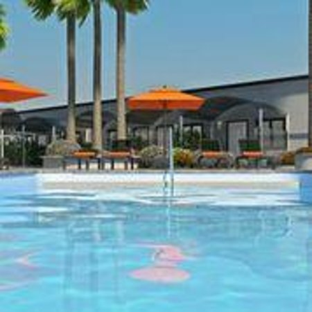 Photo of Palm Grove Hotel Palm Springs