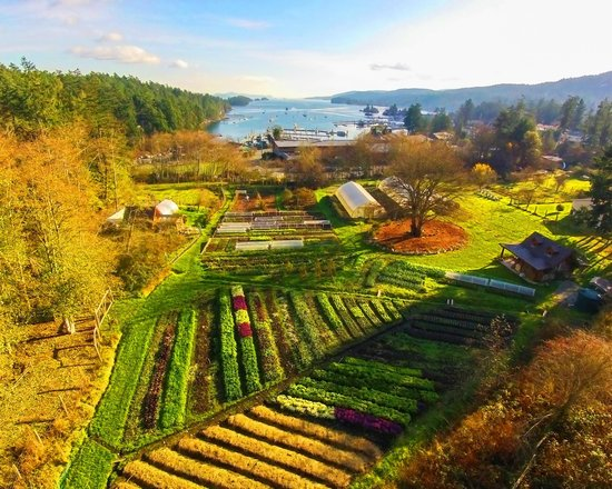 Photo of Harbour House Hotel, Restaurant & Organic Farm Saltspring Island
