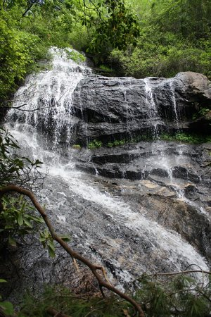 Success On The Leap Of Faith Photo De Lake Toxaway