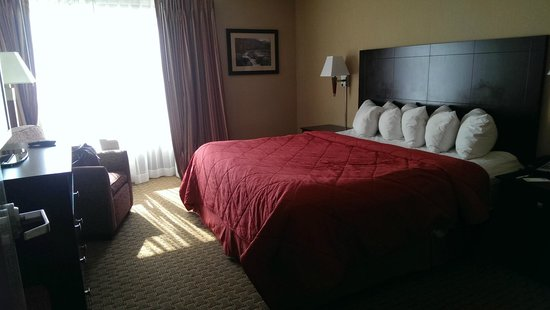 Comfort Inn & Suites: Large King size bed