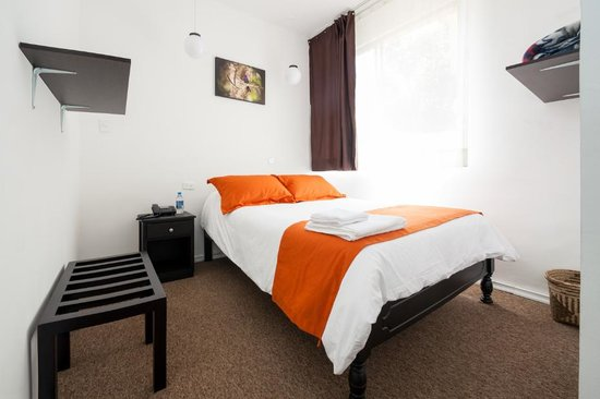 Single room picture of bird garden guest house quito for Garden guest room