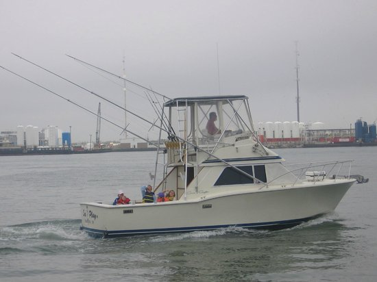 Seaplay sportfishing charters galveston tx hours for Galveston fishing charters cheap