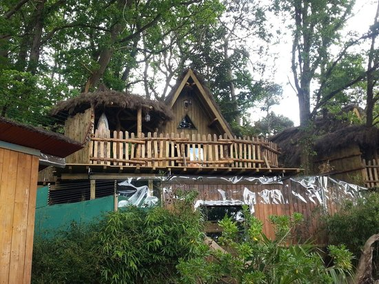 Nouveau lodge picture of zoo de la fleche la fleche tripadvisor - Safari lodge la fleche ...