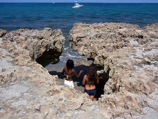 On The Beach At Low Tide Picture Of Blowing Rocks Preserve Hobe Sound Tripadvisor