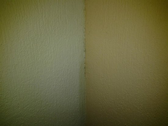 Barcelo Maya Caribe: Mold in the corner of our room.
