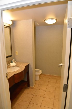 Hampton Inn and Suites Cape Cod - West Yarmouth: bath with shower