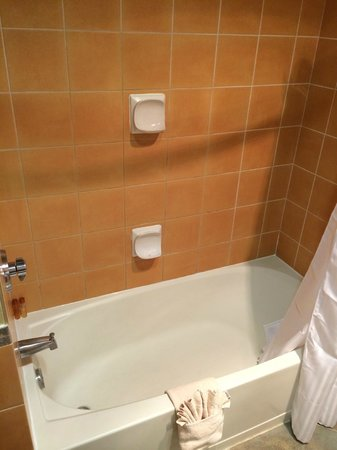 Quinault Beach Resort and Casino: 4th Floor Tub Soap Dishes